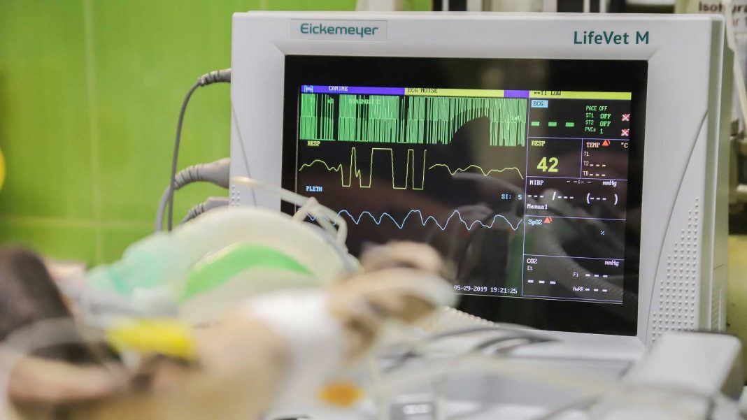 Healthcare-IT-Monitoring-Choosing-an-Ideal-Provider-on-servicetrending
